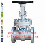 1 válvula de porta /sales do RF RTJ da flange do aço carbono @oknflow.com