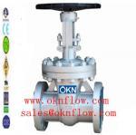 1つの炭素鋼のフランジRF RTJのゲート弁/sales @oknflow.com