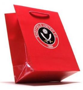 China Paper Shopping Bag, Shopping Bag, Gift Bag, Paper Bag, Carrier Bag on sale