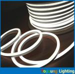 220vマイクロは白8*16mmがネオン管の適用範囲が広い新ネオンを導いた販売人を取り替えます