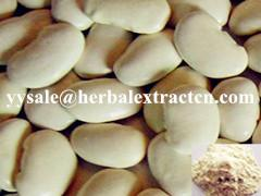 China Chinese manufacturer, White Kidney Bean Extract, Phaseolus vulgaris extract,3000 fu/g, weight lose, Shaanxi Yongyuan Bio on sale