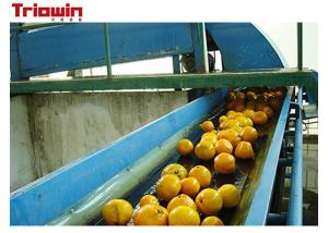China Automation Orange Juice Processing Line , Fruit Juice Manufacturing Plant Orange Extractor on sale