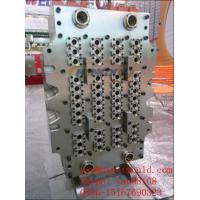 China PET preform mould on sale