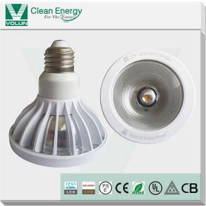 China SAA, UL, CB CE, RoHS Waterproof COB LED PAR30 spotlight12wapproved with IP65 testing report on sale