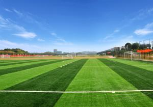China Smooth Beautiful Artificial Grass Mat , High Performance Non - Infill Fake Grass Rug on sale