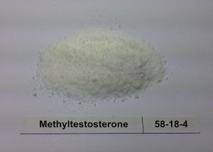 China High Pure Raw Steroid Powder 17a - Methyltestosterone Bodybuilding Steroid on sale