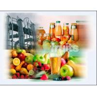 China Fruit processing Plant,  fruit plant,  fruit juice processing machine,  apple/ pear/ peach/ grapes/ banana/ pineapple/ mango/ noni fruit/ etc fruit processing plants,  rogerzdy# gmail.com on sale