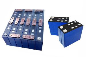 China 36v lithium ion iron phosphate battery pack-buy lithium iron phosphate battery on sale