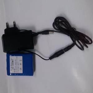 China 12V 3Ah Li-ion Battery Pack with Charger on sale
