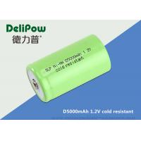 China D5000 1.2 Rechargeable Batteries For Cold Weather Long Cycle Life on sale