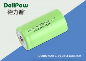 China D5000 1.2 Rechargeable Batteries For Cold Weather Long Cycle Life supplier