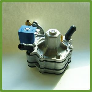 China LPG auto conversion kits single point reducer/fuel system supplier