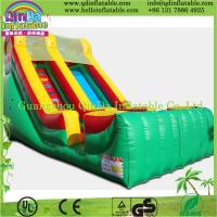 2015 hot inflatable slide for pool,inflatable water slide,water inflatable slide