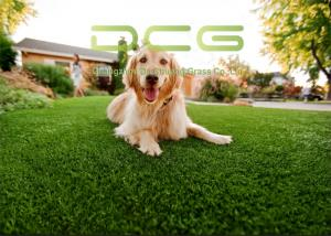 China UV Resistant Dog Pet Friendly Artificial Turf 4 Color With Simple Installation on sale