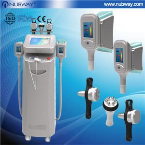 China 2013 New tow handle working same time Cryolipolysis weight loss machine on sale