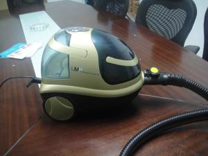 China Hand held steam cleaners for home on sale