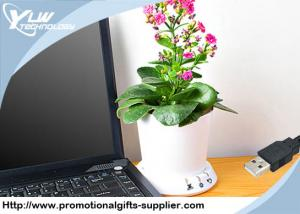 China Novelty desktop Cool USB Gadget flowerpot planting memory recorded by PC on sale