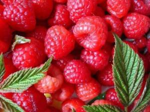 China Raspberry ketone CAS No.: 84929-76-0 on sale