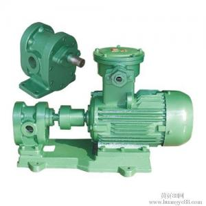 China 2CY high pressure electric fuel pump double gear oil pump on sale