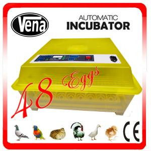 China Digtal control small size commercial poultry egg incubator for sale on sale