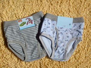 China OEM Personalized Polyester Plus Size Printed Stripe Organic Boy Briefs on sale