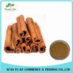 Raw Metarial Plant Extract Cinnamon Bark Extract Powder with Polyphenols