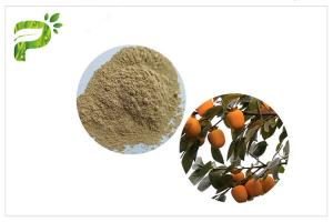 China Persimmon Leaf Plant Extract Powder Ursolic Acid CAS 77 52 1 For Sports Nutrition on sale