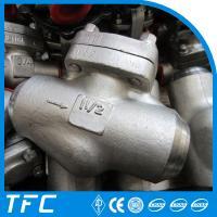 forged steel piston check valve