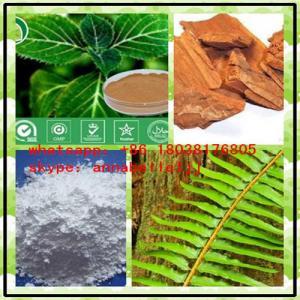 China El extracto natural pulveriza Yohimbine HCI para el aumento masculino CAS 65-19-0 on sale