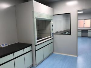 China Full steel lab fume hood / fume cupboard / fume chamber for chemistry laboratory on sale