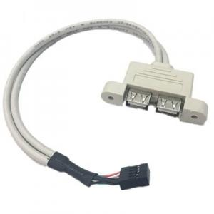 China 30cm Motherboard Internal 9pin Pitch 2.54mm to Dual Port USB 2.0 A Female Screw Lock Panel Mount Cable on sale