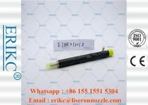 China ERIKC Genuine Delphi Injectors Car Oil Diesel Unit Injector EJBR0 1201Z on sale