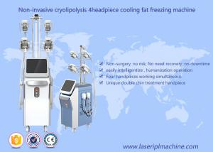 China Fat Freeze Cryolipolysis Slimming Machine Vacuum Cavitation Rf Machine on sale