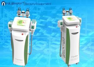 China Ultrasonic Cavitation + RF Slimming Beauty Equipment/Cryolipolysis Machine/Cool Sculpting on sale