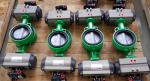 China  Pneumatic Actuator with Double Acting and Spring Return for valves