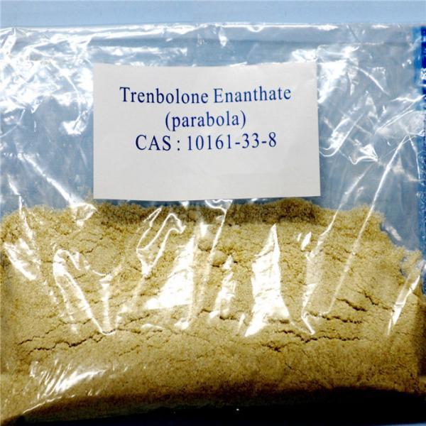 Methyltrinolone Metribolone 965-93-5 Anabolic Steroid Powder