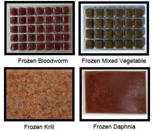 China Frozen Fish Food  Fish Food PET Food Animal Food on sale