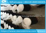 Benzocaine Anesthetic Anodyne Local Anesthetic Drugs Raw Powder CAS 94-09-7 for Pain Killer