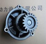 Italy IVECO diesel engine parts,Iveco generator accessories,Iveco water pump,500350785