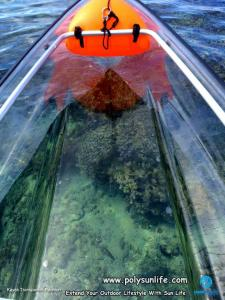The Clear Awesome Transparent Canoe Kayak For Sale Clear Kayak