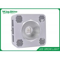 3200lm Waterproof Red Cob Led Grow Light 200w for Garden / Bonsai