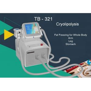 Quality Touch Screen Cryolipolysis Slimming Machine 2 Handles for Lose Weight / Fat Dissolving for sale