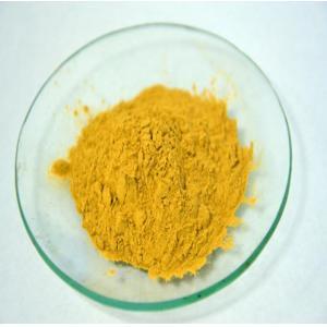 China 100%Natural Rosemary Herb Extract,2.5%-40% Rosmarinic acid/6%-75% Carnosic Acid on sale
