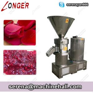 China Rose Hips Grinding Machine|Fruit Jam Making Machine|Tamariand Paste Grinder on sale