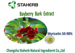China Antioxidation Bayberry Bark PowderExtract Yellow Green Color Myricetin 50%-98% on sale