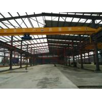 Clients First Reputation First Easy Operated 1Ton Electric Hoist Overhead Crane