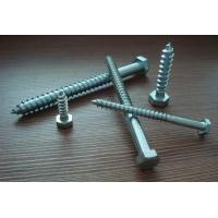 Hexagon Head Lag Screws,HEXAGON HEAD WOOD SCREWS DIN571