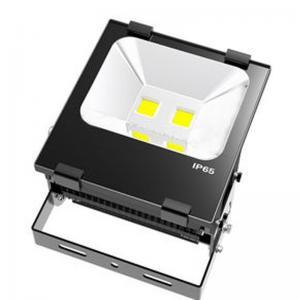 China External CRI 75 High Lumen 100W SMD LED Lighting Fixtures Nomo driver on sale