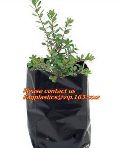 China Poly Planter, Grow Bag, garden bags, grow bags, hanging plant bags, planter, Plastic plan garden bags, garden supply pac on sale