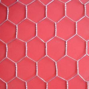 China Hot Dipped Galvanized  Hexagonal Wire Mesh With High Quality And Low Price on sale